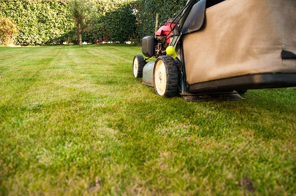 How Can You Make Your Lawn Appear Bigger?