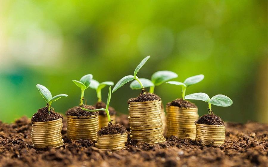 Financial Encouragements Of Running A Green Business